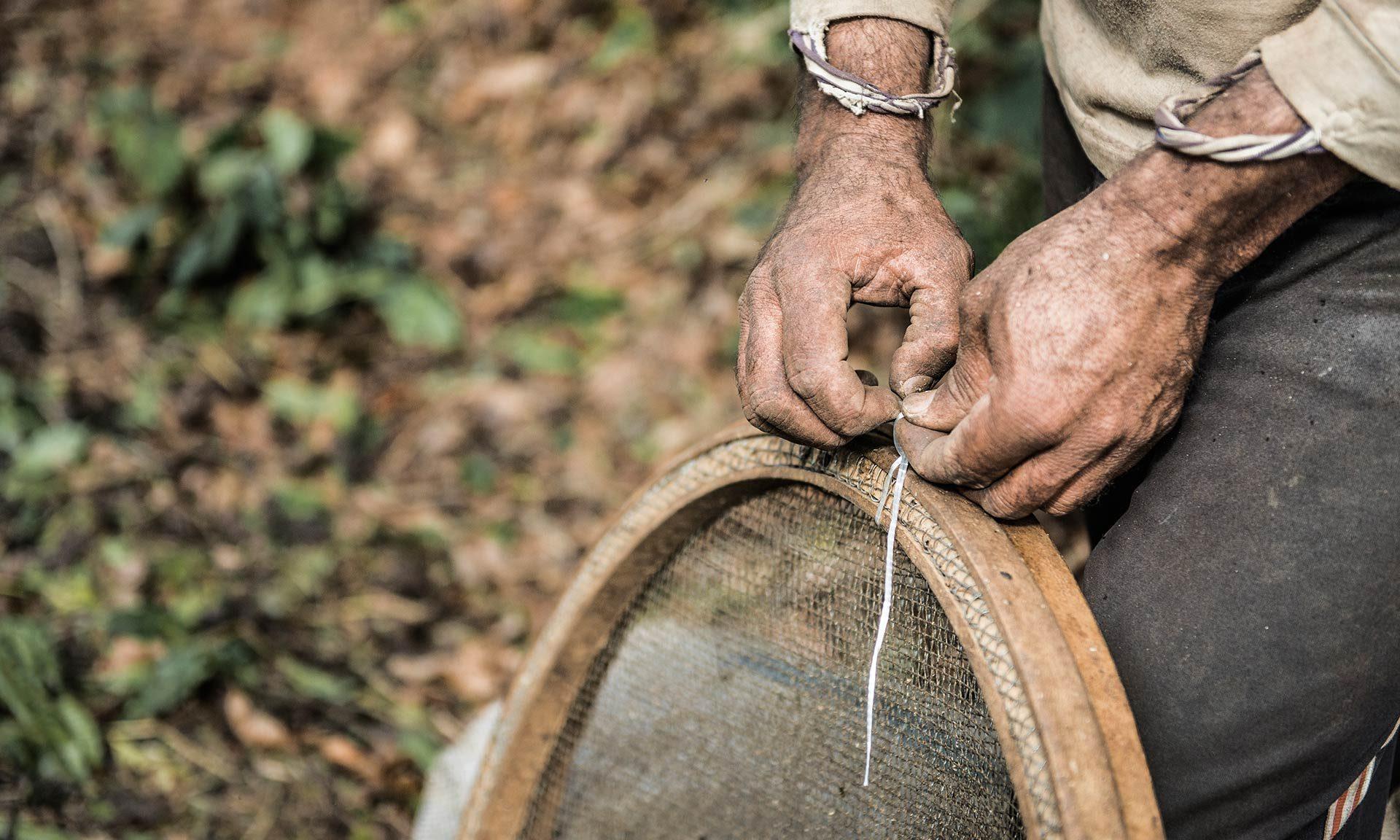Direct Trade: Kaffee direkt vom Bauern