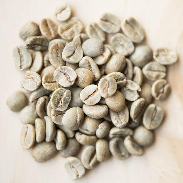 Grüne Kaffeebohnen vor der Röstung mit dem Trommelröster