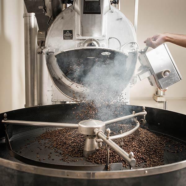 Nach dem Rösten kühlen die Kaffeebohnen anb