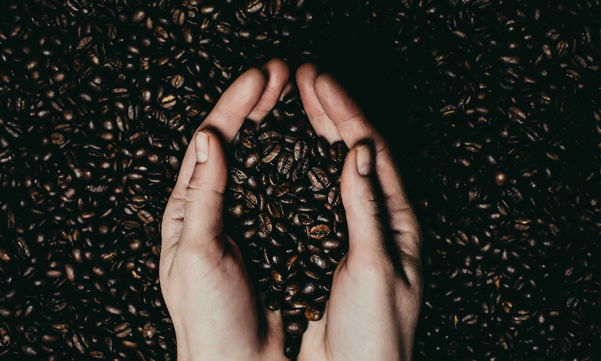 koffeinfreier Kaffee Entcoff